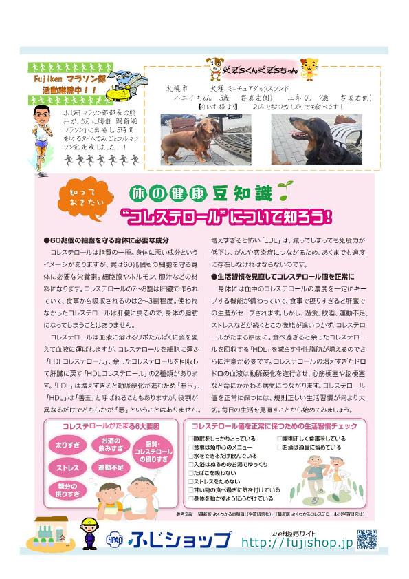 ふじ研NEWS36号3